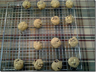Oatmeal Cranberry White Chocolate Cookies March 18 2013 (6)