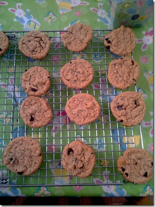 Peanut Butter Oatmeal Chocolate Chip Cookies (6)