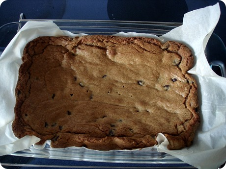 Peanut Butter Chocolate Chip Bars August 27 2013 (4)