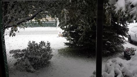 Snow Storm September 11 2014 (2)