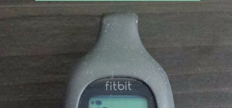 Fitbit Zip Review