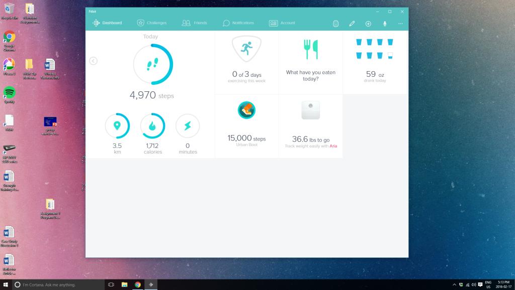 Fitbit Dashboard February 2016