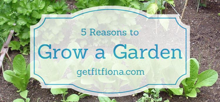 5 Reasons To Grow a Garden