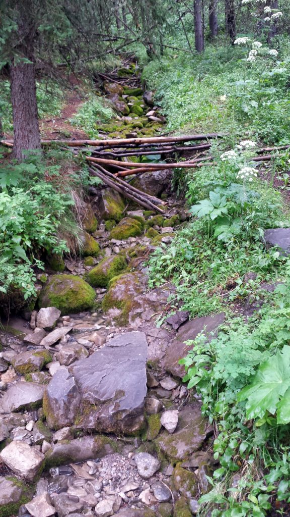 Troll Falls Kananaskis Hike