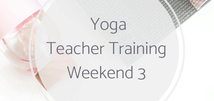 Yoga Teacher Training Weekend 3