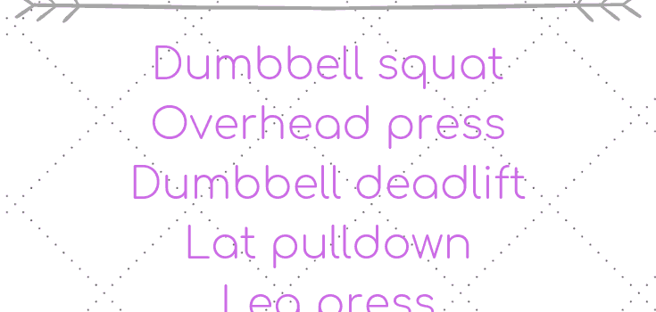 Full Body Gym Workout