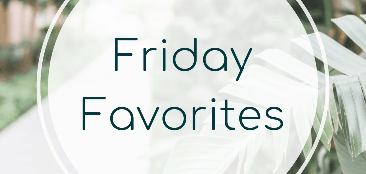 Friday Favorites: A New Planner and a Historical Fiction Book